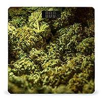 緑の雑草大麻 体重計、ステップオンテクノロジーを備えた精密デジタルボディバスルームスケール、強化ガラスイージーリードバックライト付きLCDディスプレイ