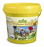 Mix di semi di fiori selvatici e piante mellifere per 100-200 mq (etichetta in lingua italiana non garantita)