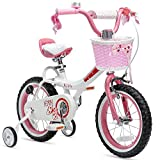 Royalbaby Girls Bike Jenny 14 Inch Girl's Bicycle With Training Wheels Basket Child's Cycle Pink