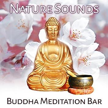 Nature Sounds: Buddha Meditation Bar, Oriental Sounds, Tibetan Bowls, Music for Yoga, Massage, Reiki, Chakra Healing