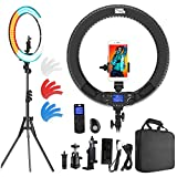 Ring Light with Wireless Remote Controller, Pixel 19 inch Pro Vlogging Light with LCD Display Bi-Color 60W 3000K-5800K CRI≥97 & TLCI ≥99 with 3 Color Filters for YouTube, Twitch and Facebook Live