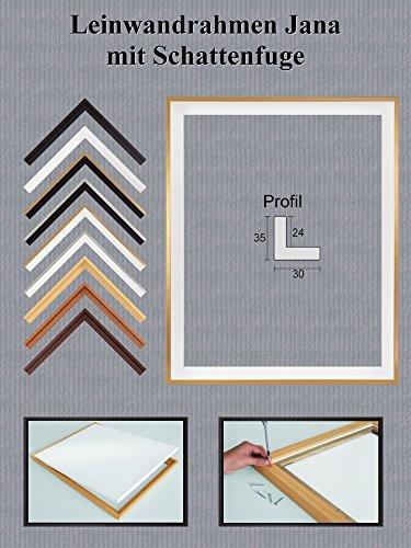 Jana Echtholz Leinwandrahmen mit Schattenfuge 37 x 59 cm Größe frei wählbar erhältlich in 9 Farben Hier Weiß Gold