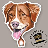 THE HEADS Tommi Vuorinen Magnet Dog Lader Nova Scotia Duck Tolling Retriever by Tommi...