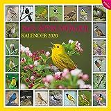 365 Singvögel 2020 - Broschürenkalender - Wandkalender - mit Poster - Format 30 x...