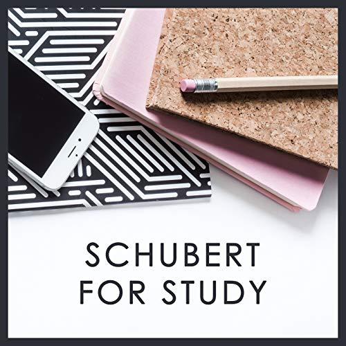Schubert: Variations D.802 On