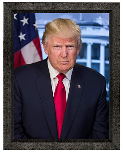 Donald Trump Photograph in a Black Beveled Frame - Historical Artwork from 2016 - US President Portrait - (8