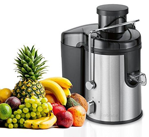briebe Licuadora para Frutas y Verduras, 400W, 2 velocidades, Acero Inoxidable, Boca Ancha
