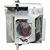 OPTOMA TECHNOLOGY BL-FU260C Optoma 260W Lamp for EH416/Wu416 Projector