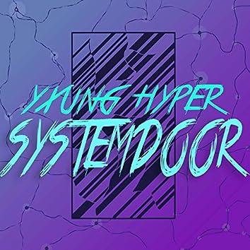 Systemdoor