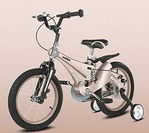 AI-QX 12/14/16 Pulgadas Bicicleta Infantil Estudio Aprendizaje Montar a Caballo Bicicleta niños...