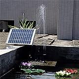 Kit De Bomba De Agua Solar, Sumergible Sin Escobillas, Bomba De Agua con Panel Solar De 5 W para Fuente Solar, Estanque De Peces Y Acuario