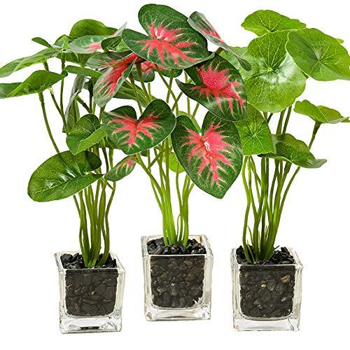 Aisamco Conjunto de 3 Plantas Artificiales Faux Tabletop Green con macetas de Vidrio Transparente Plantas de Seda en florero de Vidrio Plantas Falsas en macetas para la decoración del hogar