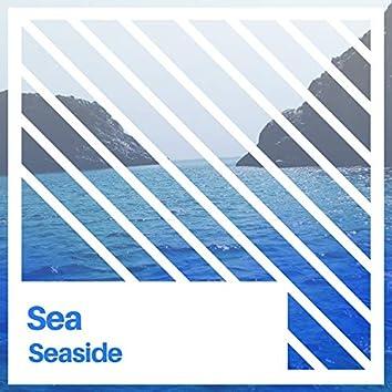 # 1 Album: Sea Seaside