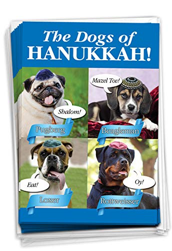 NobleWorks - 12 Happy Hanukkah Cards Boxed (1 Design, 12 Cards) - Funny Religious Chanukkah Notecard Set, Bulk Holiday Greetings - Box of Dogs of Hanukkah B2547HKG