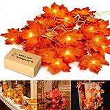 Guirlande d'automne, guirlande de feuilles d'automne HENMI, guirlandes de feuilles d'érable, saison d'automne 20 lumières, décoration parfaite pour les lumières de Thanksgiving et de Noël