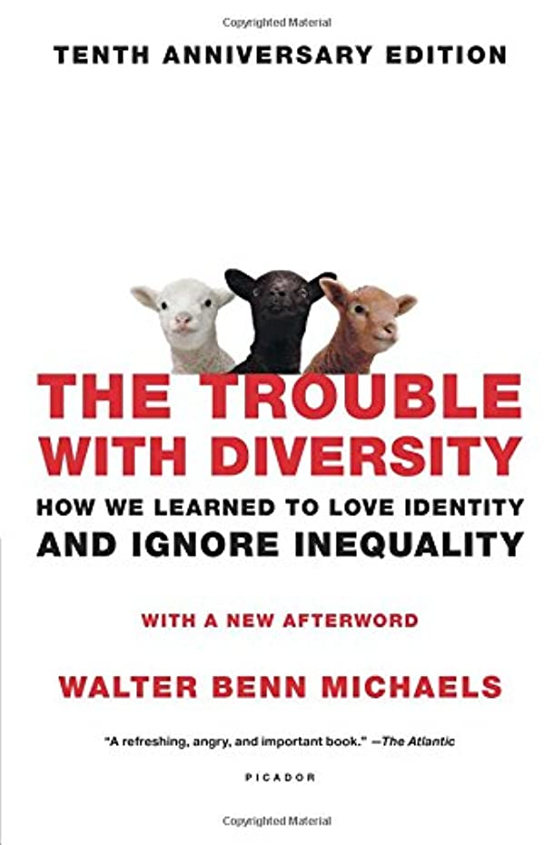 The Trouble with Diversity: How We Learned to Love Identity and Ignore Inequality