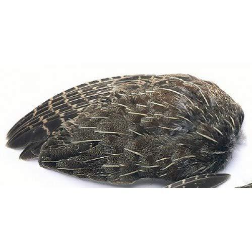 Veniard English Rebhuhn Flügel zum Fliegenbinden, Rebhuhnfedern