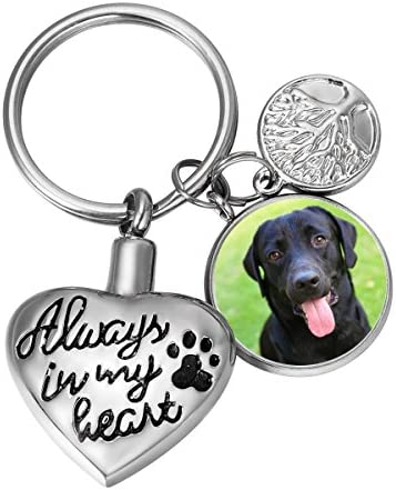SG Always in My Heart Pet Paw Cremation Urn Keychain for Dog Ashes Keepsake Personalized with product image