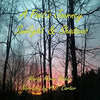 A Poet's Journey: Sunlight and Shadows audiobook cover art