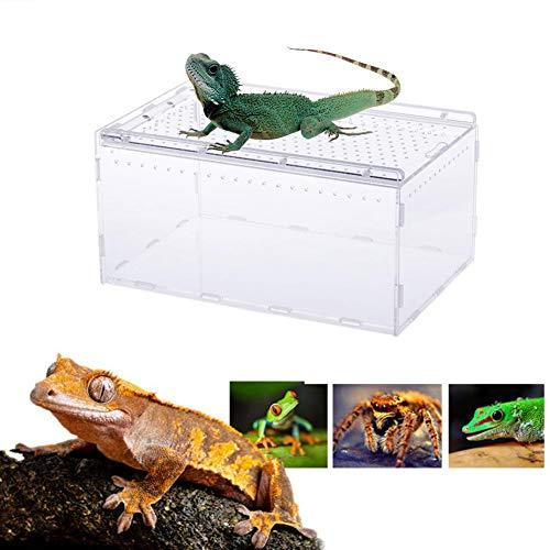 precauti Transparenter panoramischer Insekt-einziehender Kasten-Acrylreptil-Zuchtkasten für Schlangen-Spinnen-Eidechsen-Skorpions-Hundertfüßer
