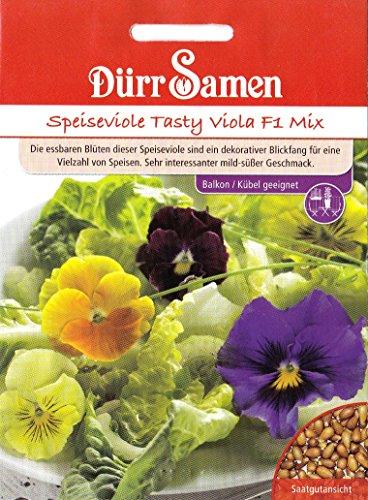 Speiseviole Tasty Viola, essbare Blüten, Balkon/Kübel geeignet, Viola wittrockiana, ca. 30 Samen