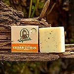 Dr. Squatch Men's Soap Variety Pack – Manly Scent Bar Soaps: Pine Tar, Gold Moss, Cedar Citrus, Bay Rum, Cool Fresh Aloe… 8