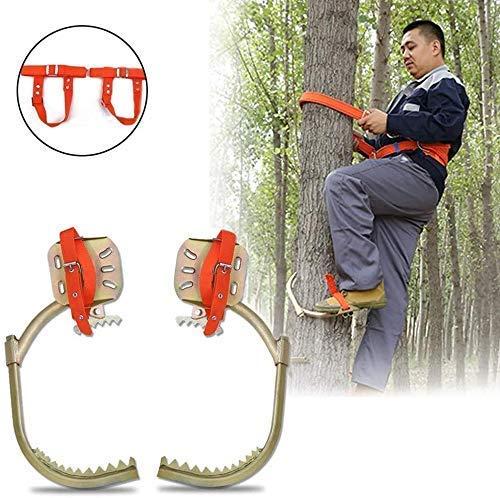 Kletterbäume Artifact Elektriker Holz Pole Fuß Schnalle, verdicken Bäume Werkzeug Klettern, for die Jagd Beobachtung, Kommissionierung Obst, Kokosnuss, einfach zu verwenden, Tree Climber, 300Model (Gr