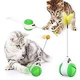 BSDIHRIWEJFHSIE Nuevos Suministros de Juguetes para Mascotas Juguete para Gatos Tocadiscos Tease Cat Stick Vent Balance Car Pet Sports Tumbler Spring Man-Scale Car Green, Add 20cm Carp