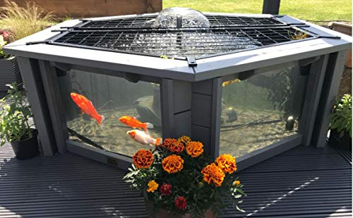 Clear View Garden Aquarium Lily Light Grey – Bassin hexagonal surélevé