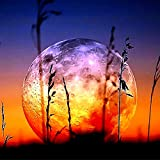 Diamond Painting Kits for Adults and Kids DIY 5D Moon Crystal Rhinestone Round Full Drill Craft Diamond Art by Number Home Wall Décor 12x12 Inch