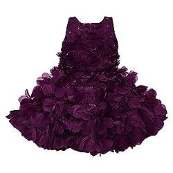 4189c45183 Wish Karo Baby Girl s Tissue Party Wear Frock Dress (Wine