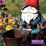 Primus Nain en métal avec jardinière en brouette Décoration de Jardin Peint à la Main 40 x 13 x 30 cm