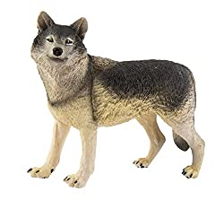 Safari Ltd. Wildlife Wonders Wolf Realistic Hand Painted Toy Figurine Model Quality Construction from Safe and BPA Free Materials for Ages 3 and Up Large