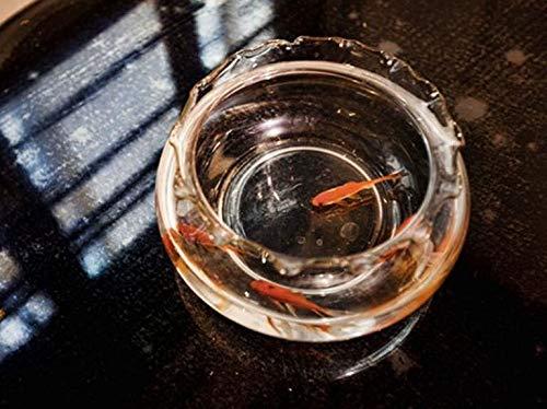 Doowops Apareciendo Goldfish Truco (Metal) Trucos de Magia Peces Aparecen Magia Mago Escenario Ilusiones Accesorios Accesorios Mentalismo Diversión