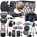 Canon EOS Rebel T7i DSLR Camera Deluxe Video Kit with Canon EF-S 18-55mm f/3.5-5.6 is STM Lens + Wide Angle Lens + 2X Telephoto Lens + Flash + SanDisk 32GB SD Memory Card + Accessory Bundle by Canon