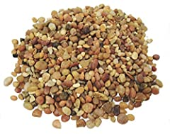 Terrarium Rocks and Succulent Gravel. One pound bag of pebbles. Polished River pebbles Can be used for Fairy Garden Rocks. add drainage. Decorative rocks for plants Great Gravel for plants. Small pebbles make a great soil cover for Bonsai, Succulents...