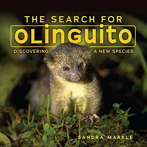 The Search for Olinguito cover art