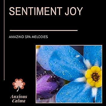 Sentiment Joy - Amazing Spa Melodies