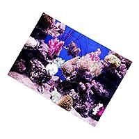 魚タンク 水中ポスター 水族館 水槽 ステッカー PVC バックグラウンド 3D画像 海 サンゴ 30x18cm
