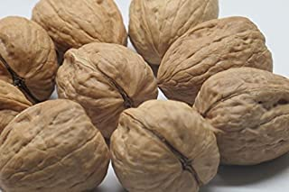 Best walnut shells for sale Reviews