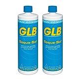 GLB 71016A-02 Sequa-Sol Sequestering Agent Pool Stain Preventer, 1-Quart, 2-Pack