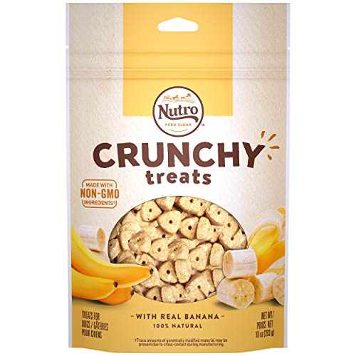 NUTRO Small Crunchy Natural Dog Treats with Real Banana, 10 oz. Bag