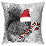 antcreptson Christmas Squirrel Candy Cane Santa Hat Throw Pillow Cover Decorative Cushion Case Home Square Pillowcase Decor for Sofa Couch Decorations 18'' x 18''inch