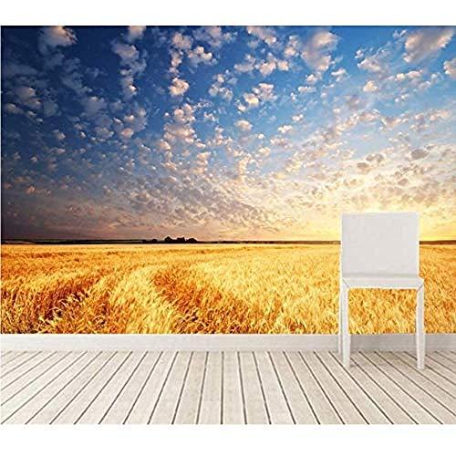 Fotomurales Decorativos Pared Vinilos Decorativos Papel Fotografico 3D Murales Campos Paisaje Cielo Amaneceres Y Puestas De Sol Nubes Naturaleza Sala De Estar Sofá Tv Papel Pintado Del Dormitorio