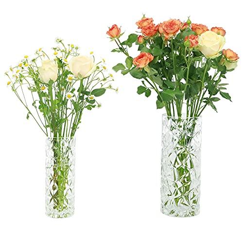 Exqelf Flower Vase Glass Cylinder Tall Vase Set of 2,for Home Office Decor or Gift
