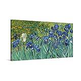 PICANOVA – Vincent Van Gogh Irises 100x50cm – Cuadro sobre Lienzo – Impresión En Lienzo Montado sobre Marco De Madera (2cm) – Disponible En Varios Tamaños