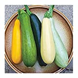 Harvest in about 50 days Seeds are Non-GMO, easy to grow and hand packed by David's Garden Seeds in the United States Delightful blend of the best open pollinated summer varieties It is attractive and economical and provides gardeners with a broad se...