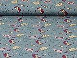 Baumwolljersey Einhörner von Glünz,grau/blau (25cm x