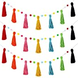 3 Pieces Colorful Rainbow Tassel Garland Pom Pom Garland Macrame Woven Garland Colorful Tassel Garland Banner Decorative Wall Hangings for Baby Shower New Year Valentine's Day Decor (Bright Colors)