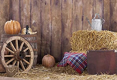 Tasty Wine on Wooden Barrel on Grape Plantation Countryside Harvest Rural Growth Background for Kid Baby Artistic Portrait Photo Shoot Studio Props Video Drape 10x15 FT Photography Backdrop